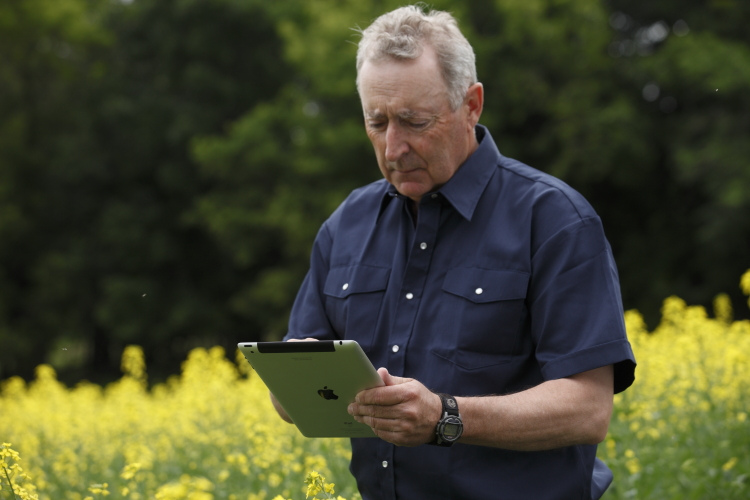 ipad in canola field