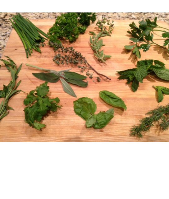 Fresh or Dry Herbs: what's a cook to do?