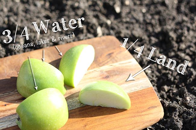 Step 2: Earth As an Apple Earth Day Activity