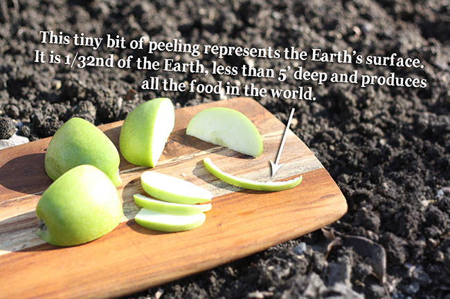 Step 5: Earth As an Apple Earth Day Activity