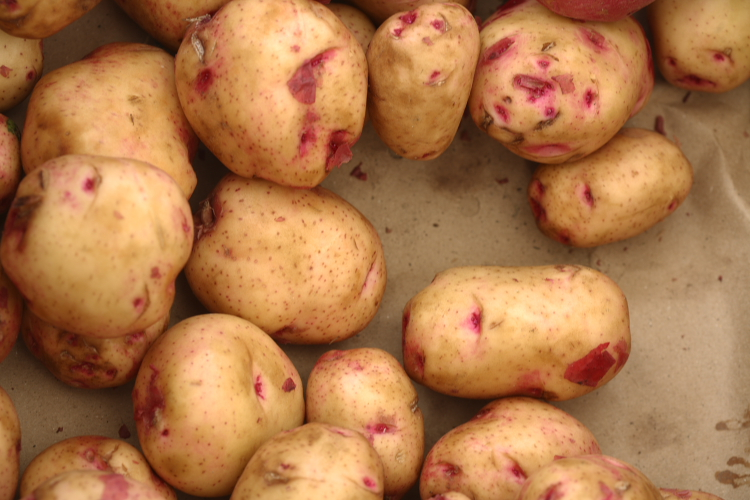 potatoes at market