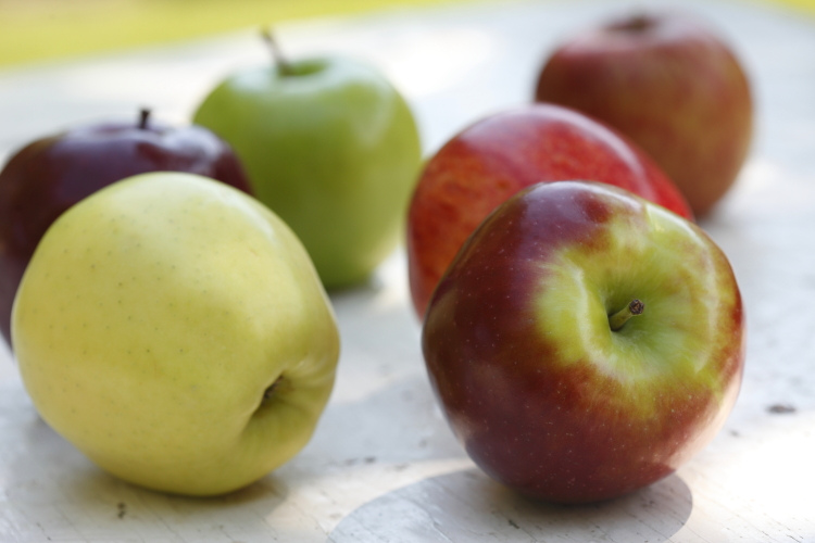 fruit serving canada food guide