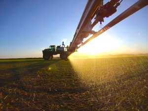 Protecting with Glyphosate | www.canolaeatwell.com