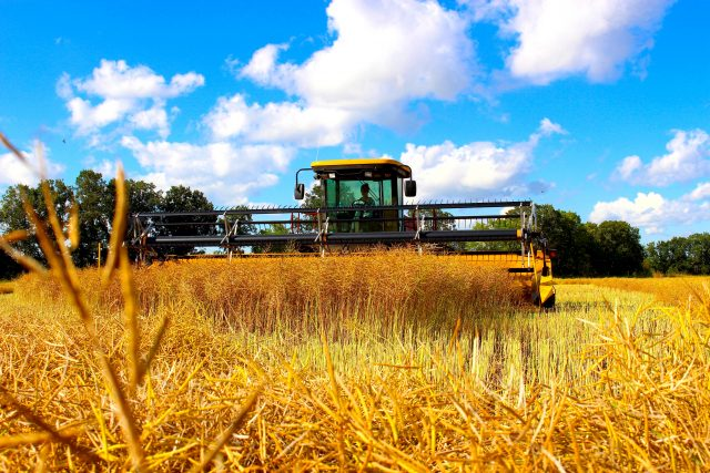 #FarmToFood: Preparing for Harvest
