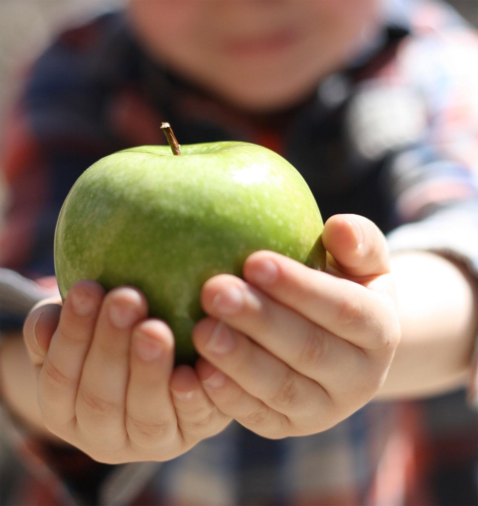 Earth as an Apple